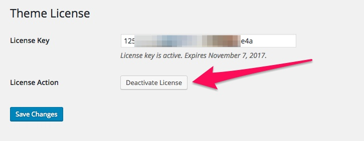 How to Activate Theme License 3