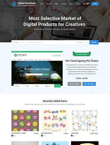 WordPress Themes 5