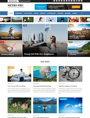 WordPress Themes 23