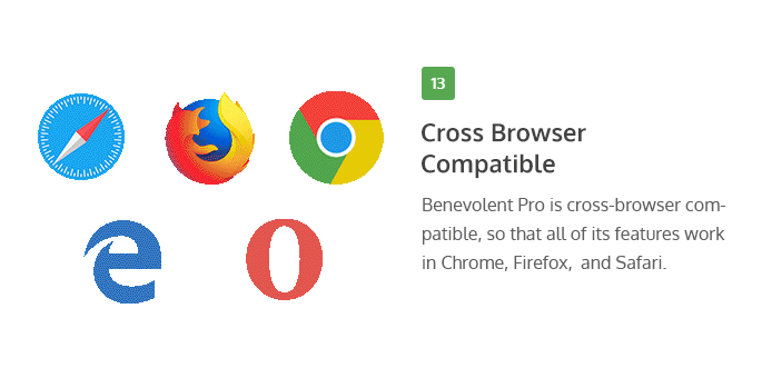Cross-Browser Compatible of Benevolent Pro