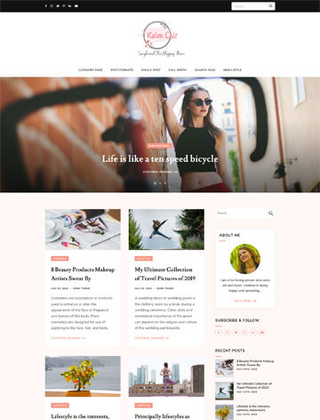WordPress Themes 40