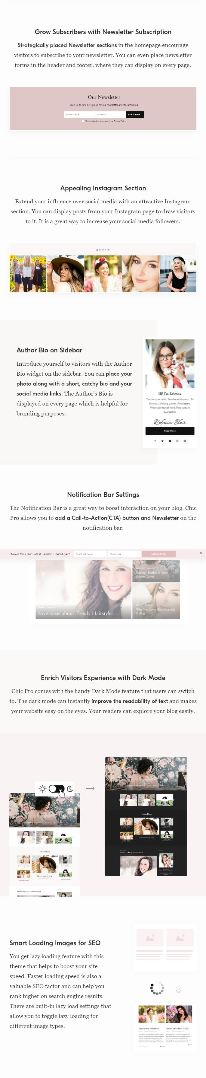 Features of Chic Pro WordPress Theme